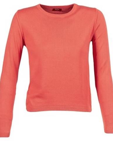 Oranžový sveter BOTD